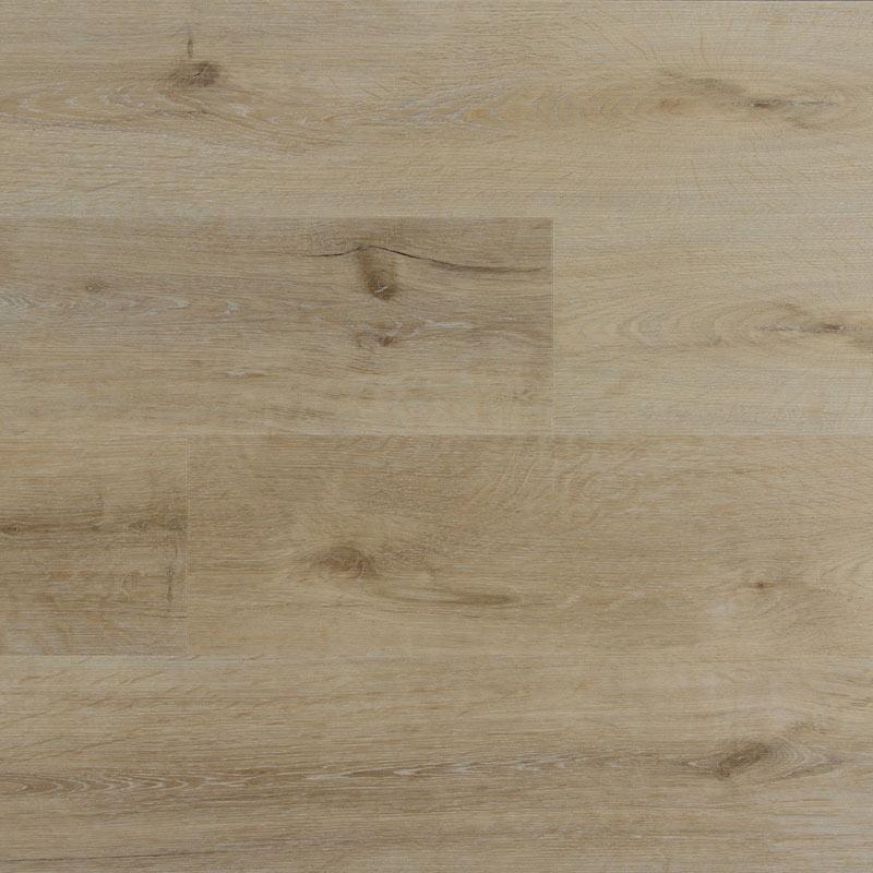 Trident-Samples-Alpine-Ash